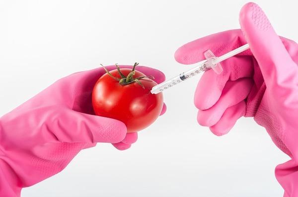 בדיקות מזון