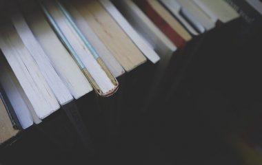 מהי תורת הספרות?