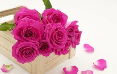יתרונות של משלוחי פרחים באינטרנט