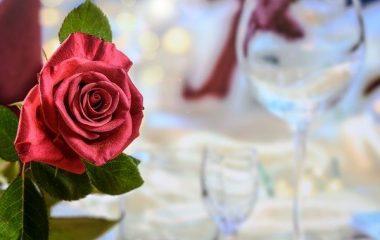 איך לבחור בין הרבה מקומות שמתאימים לחתונה בטבע?