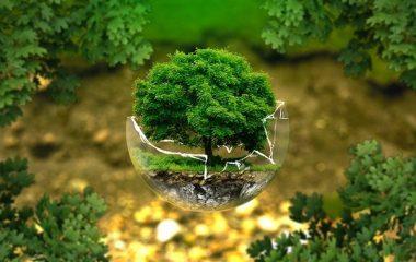 שרותי איכות סביבה מתקדמים